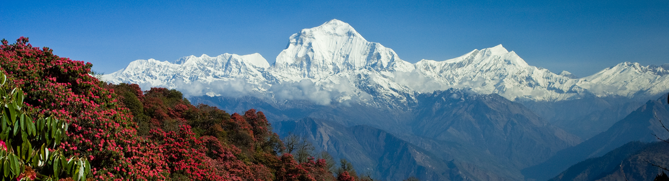 Himalayan mountains with a blue sky